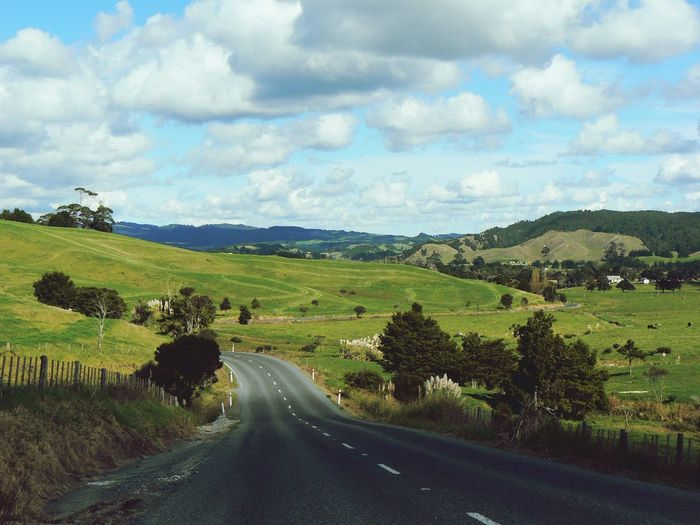 Landscape New Zealand Road 2007