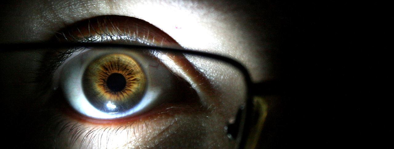 human eye, eyesight, eyelash, eyeball, sensory perception, close-up, vision, iris - eye, indoors, human body part, one person, day
