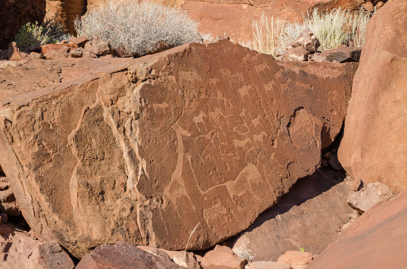 Close-up of famous twyfelfontein rock painting and scratching in damaraland, namibia, africa