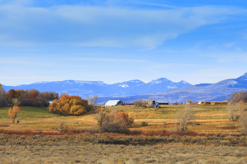 Rural countryside Farmland Country Living Idyllic Scenics EyeEm Best Shots Best Of EyeEm Fine Art WOW Landscapes With WhiteWall Canon Canon 5d Mark Lll Landscapes Colorado Autumn Farm Life Farm Ranch Barns Barnaholics Barnlove