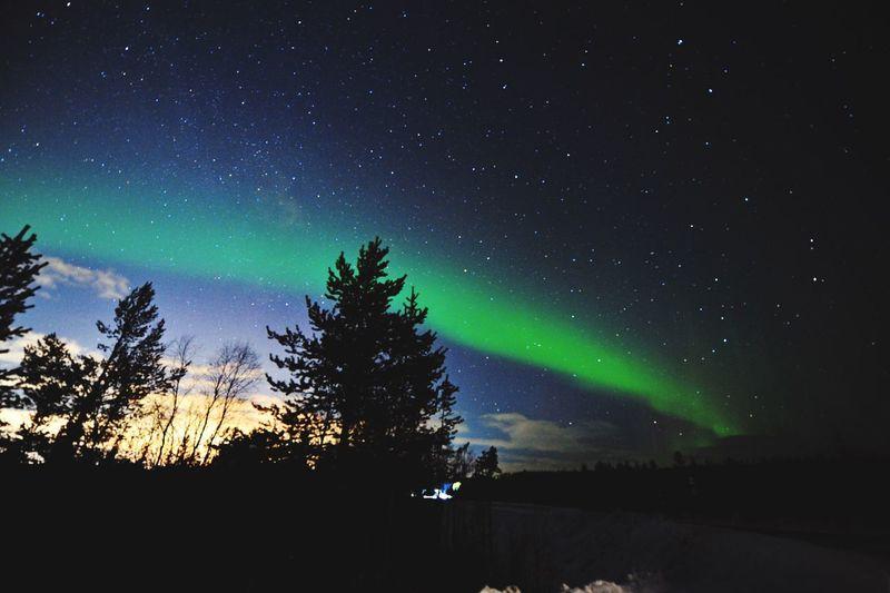 绿光森林 Green Forrest Night Star - Space Astronomy Space Sky Scenics - Nature Tree First Eyeem Photo