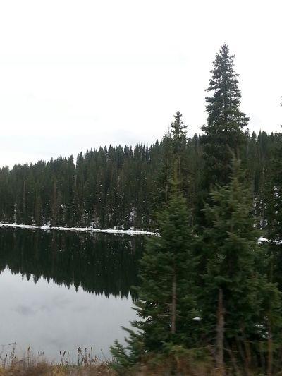 Enjoying Life Colorado Mountians Snow No Edit/no Filter Outdoor Photography Nature_collection