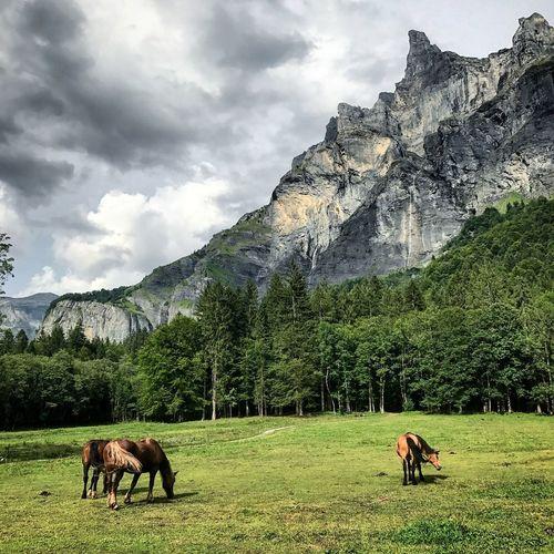 Mountain Landscape Cloud - Sky Greatoutdoors
