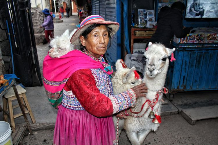 Andean woman with her Alpacas. Colorful Portrait Alpacas City Warm Clothing Women Traditional Clothing Business Finance And Industry Architecture Building Exterior Market