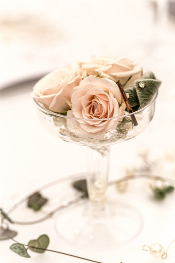 Pink roses in a champagne glass at Blenheim Palace flower show.. Blenheim Flower Show Celebration Flower Arrangement Flower Arrangements Ivy Leaves Pink Wedding Champaign Glasses Close-up Decoration Dreamy Glass Hearts Indoors  Marriage  No People Pearls Pink Roses Roses Roses Flowers  Table Decoration Wineglass