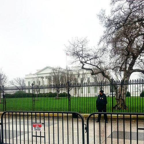 The White House is most certainly secure __________________________________ Whitehouse WashingtonDC DC Washington Security Photographer Photo Picoftheday Photooftheday New Travel Explore Adventure Outdoors Rain President Bernie Feelthebern Obama Barack Igers Instapic Instagood