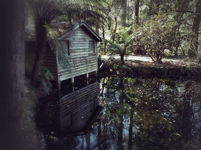 reflection of a shack EyeEm Selects Trees Paths And Trails EyeEm Nature Lover EyeEmBestPics Park Reflections In The Water Reflection Reflection Reflection_collection Reflection Lake House Renovation House Reflected In Water Shacks DandenongRanges Dandenong Ranges MelbournePhotographer Built Structure Sky Close-up