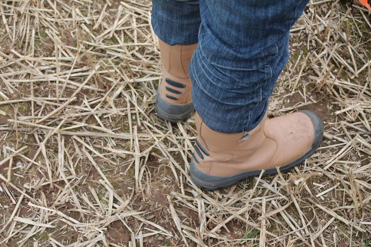 Boots Mans Legs And Feet Brown Boots Farm Worker Farmers High Angle View Human Foot Human Leg Jeans Legs One Person Real People Standing Work Boots