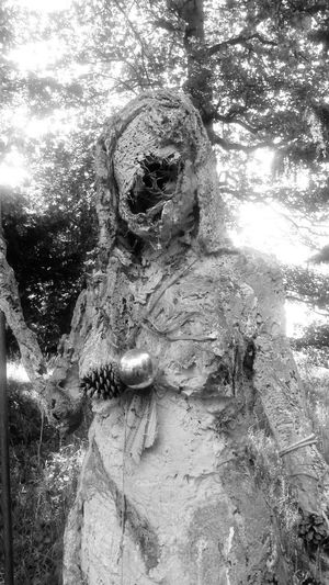 Statue Outdoors Tree Black And White Figurine  Spooky Spooky Figure National Trust 🇬🇧 If You Go Down To The Woods Today.. Imagination