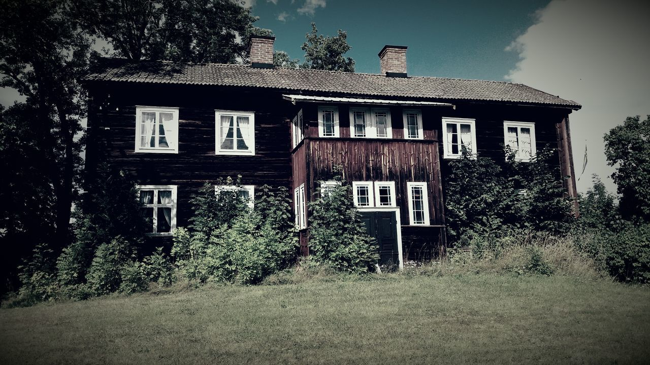 architecture, building exterior, built structure, tree, house, window, abandoned, no people, spooky, day, outdoors, grass, sky