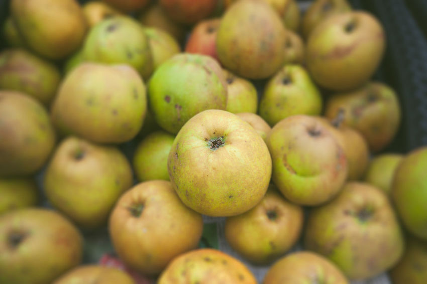 Healthy Eating Food And Drink Fruit Food Freshness Wellbeing Large Group Of Objects Apple - Fruit Market Abundance No People Backgrounds Close-up Retail  Heap Full Frame Green Color Day Market Stall For Sale Ripe