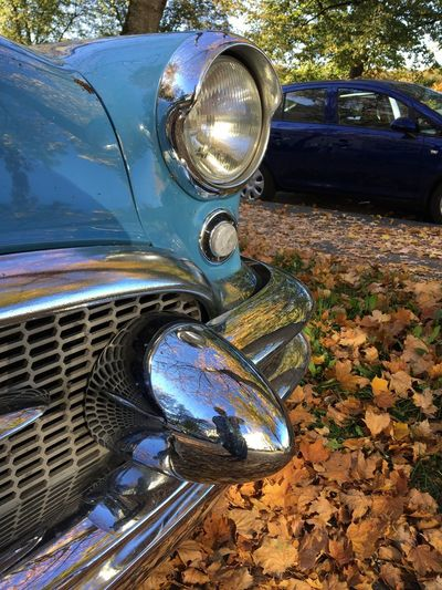 Oldtimer im Herbstlaub, Leaves Autumn🍁🍁🍁 Mode Of Transportation Car Transportation Motor Vehicle Land Vehicle Headlight Day Metal Retro Styled Reflection Nature Outdoors Vintage Car Chrome Tree