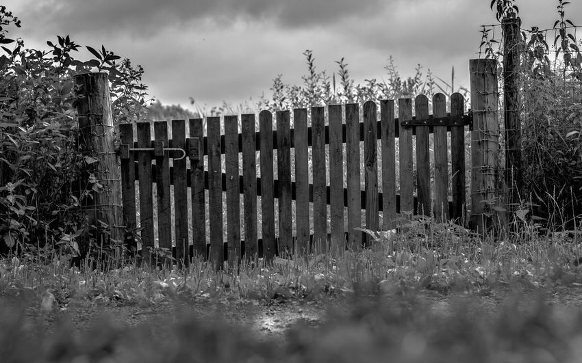The Slightly Wonky Gate Blackandwhite Photography Bolted Close Closed Closed Gate End Entrance Forward Gate Gated  Gateway No Entry Pass Picket Fence Posts Security Shut Slatted Sloping Stop Through Unlevel Wonky Wooden Gate Wooden Gateway.
