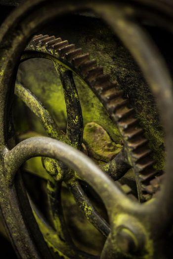 Green Color Selective Focus Close-up Gears Oldmachine Engranaje Máquinavieja