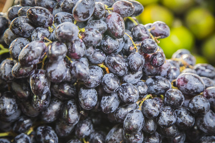 Extreme close-up of black grapes