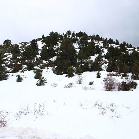 Barruera Snow