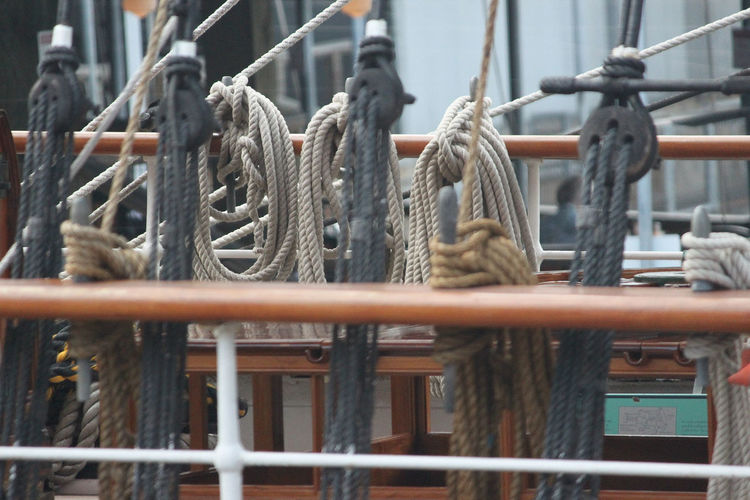Close-up of ropes in row