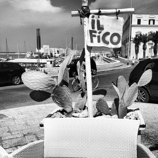 che fico! Sky And Sea Veryitalianpeople B&w Seafood