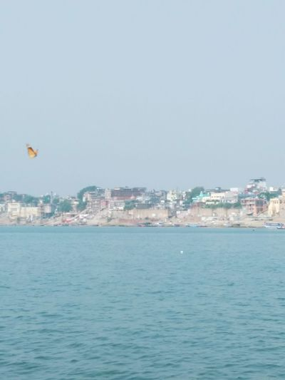 Butterfly FlyHigh Its  Kashi Travel Destinations Sky Beach Day Water Town Nature Indian Architecture Holycity Varanasi Kashi Benaras Holyriver Ganges Banarasiya EyeEmNewHere Let's Go. Together.