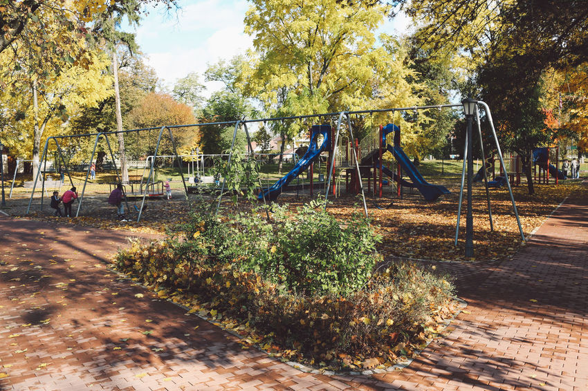 Autumn Colors Day Growth Leafs Nature No People Outdoor Play Equipment Outdoors Park Playground Tree