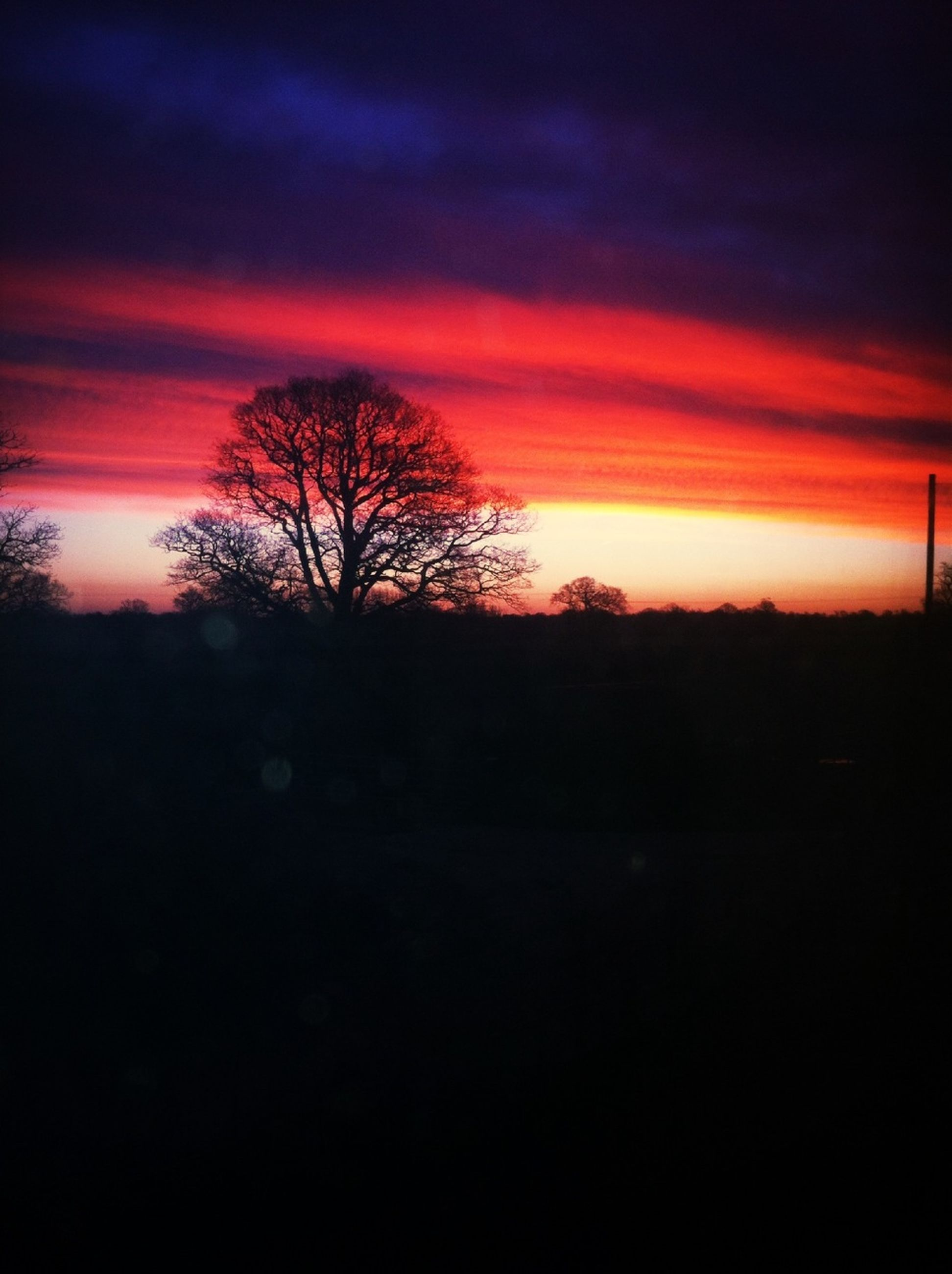 sunset, silhouette, tranquil scene, tranquility, scenics, orange color, sky, beauty in nature, tree, bare tree, landscape, nature, idyllic, cloud - sky, dramatic sky, dark, dusk, non-urban scene, outdoors, field