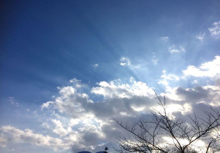 やっぱり青空が いちばん❤ ココロも晴れる キミに逢えると 笑顔になれる(≧◡≦) 青空 笑顔 ハピハピ キミに逢えた Blue Sky Smile Happiness Eye Em Nature Lover Nature Cloud - Sky 繋がるソラ キミに届け