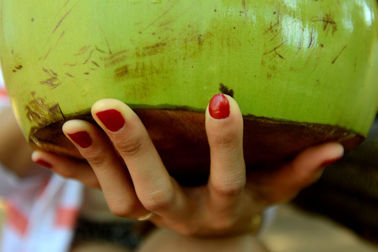Cropped image of woman hand holding coconut