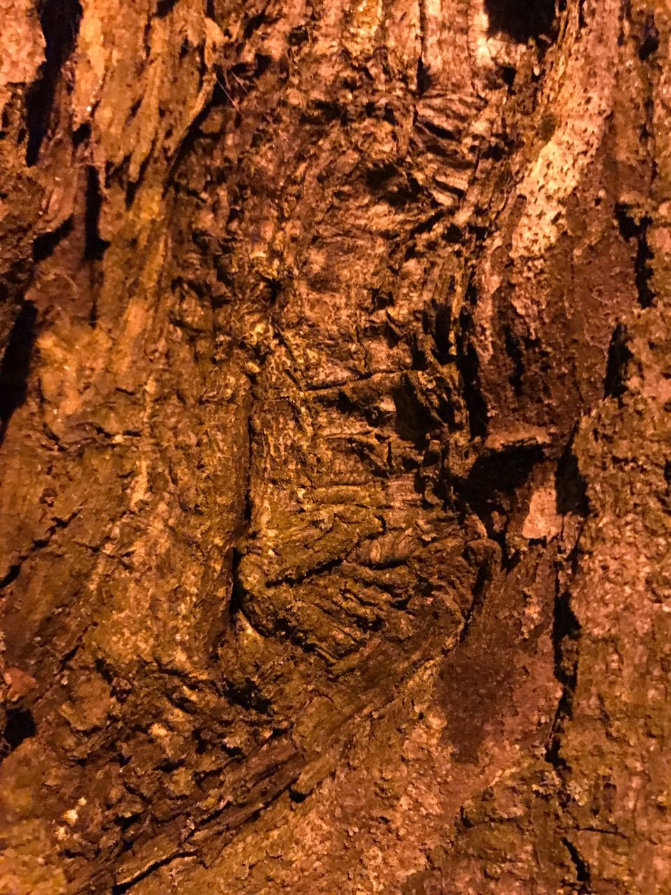 textured, rock - object, rock formation, geology, mud, backgrounds, nature, full frame, physical geography, no people, brown, day, outdoors, cave, close-up