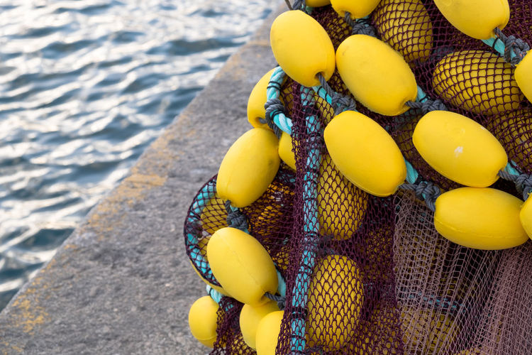 High angle view of yellow eggs on beach