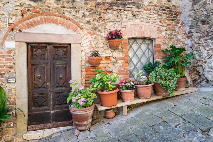 Detail of stone houses in an alley of an ancient Tuscan village in central Italy. Alley Ancient Architecture Building Building Exterior City Cobblestone Creeper Plant Door Europe Exterior Façade Floral Historic House Italian Italy Medieval Old Picturesque Pot Stone Street Tourism Town Traditional Culture Travel Tuscany Urban Village Wall