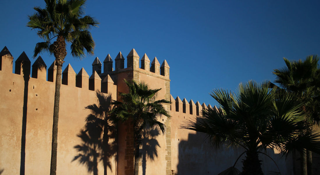 Rabat Architecture Blue Building Exterior Built Structure Clear Sky Day Fortress Growth Nature No People Outdoors Palm Tree Protection Ramparts Sky Tree