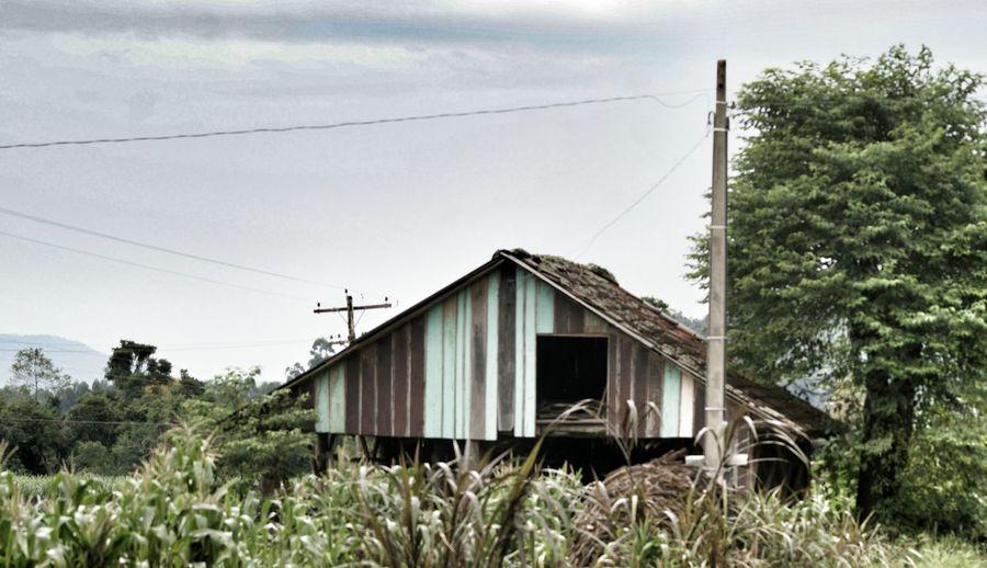 This Old Barn Landscapes Of Brasil NEM Architecture NEM Landscapes