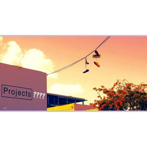 Projects ?? Haveyouproject Astudesprojets Miami Wynwood Shoes Sneakers Hang Pendu Crime Electric Electrique Wall Mur