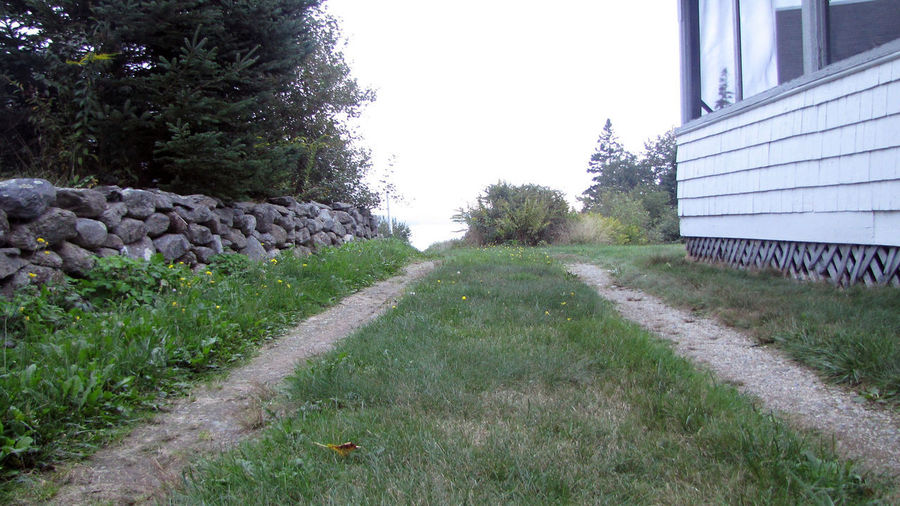 Path Architecture Building Exterior Built Structure Converging Lines Cottage Day Forward Grass Growth Maine Nature No People Outdoors Perspective Roaf Sky Summer Tracks Tree Vacation Time