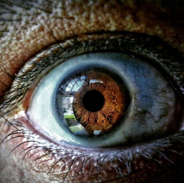 EyeEm Eyeball Humaneye Macro