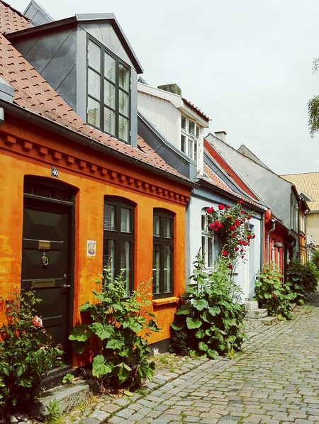 Møllestien Århus City Colourful Houses Charm Summer Denmark Uoutdoors Pretty View Photooftheday