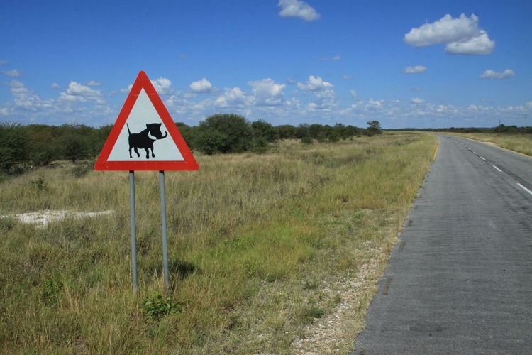 Road sign - beware of warthogs in namibia