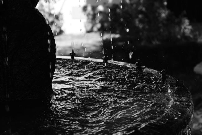 Water Day Nature Outdoors People One Person Sky City Irrigation Equipment Only Men Noir Et Blanc Preto E Branco Black And White Fonte Fontaine Fontain