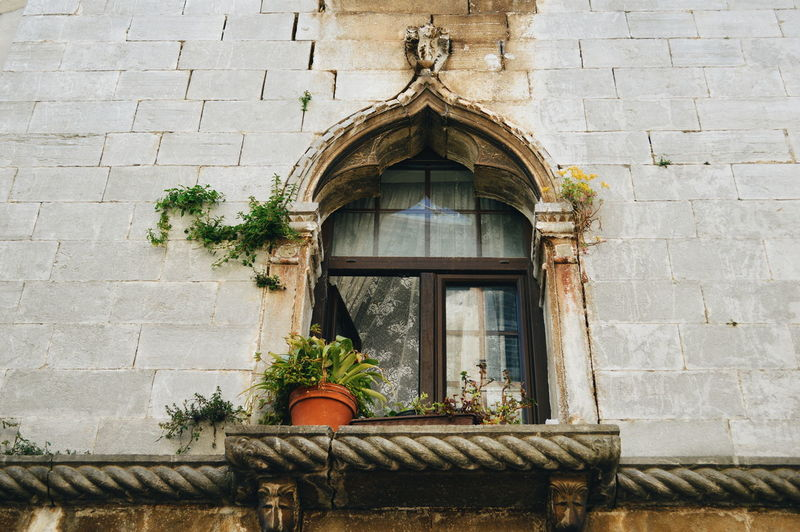 Low Angle View Of Potted Plant At House Window