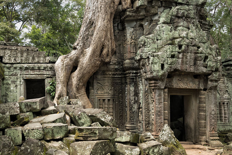 Ta Prohm Architecture History Ancient Civilization Travel Destinations Archaeology Old Ruin Ruins Cambodia Siem Reap Ta Prohm Giant Roots Giant Trees Angkor Archaeology Temple Buddhist Hindu Cultures Travel Holiday Vacations Religion Landmark Beautiful Khmer