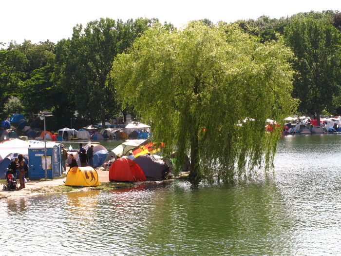 Campground Camping Camping Out Campinglife Campsite Festival Idyllic Idyllic Scenery Lake Lakeshore Music Festival Outdoors Reggae Festival Riverbank Riverside Shore Summer Summerjam Summertime Tents Tree Festival Season Waterfront Willow Camp