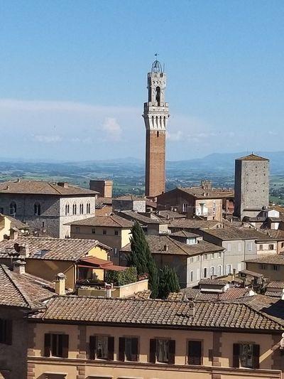 Torre del