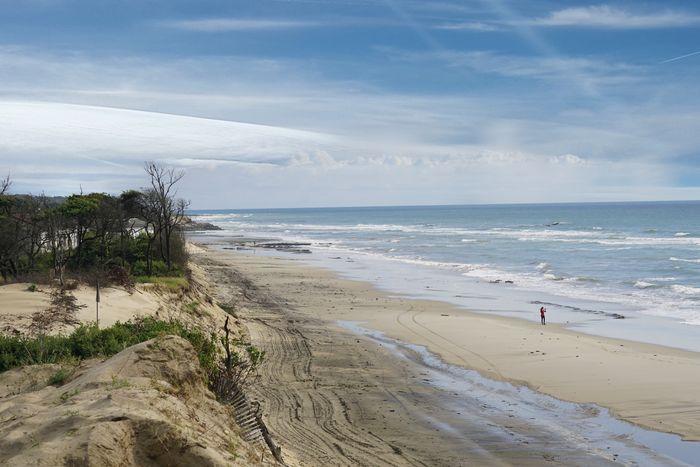 Beach Sea Scenics - Nature