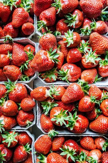 Berries Eating Food Freshness Fruit Ready-to-eat Red Berries Strawberry Vegan Vegetable Vegetables Vita Vitamin