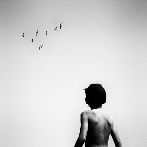 Birds flying high Bird Flying Child Flock Of Birds Silhouette Shirtless Boys Sky Children Sea Bird