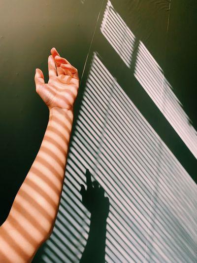 High angle view of woman hand on shadow