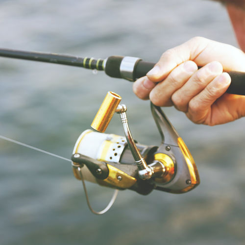 Cropped hand holding fishing rod