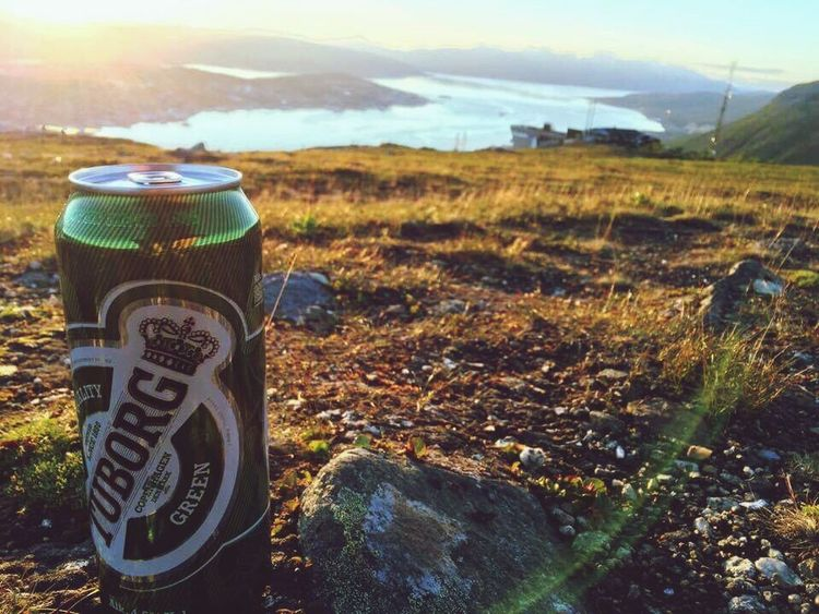 No People Nature Sunlight Sky Landscape Outdoors Day Tranquil Scene Tranquility Scenics Beauty In Nature Road Sign Close-up Midnight Sun Tromsø Beer Tuborg