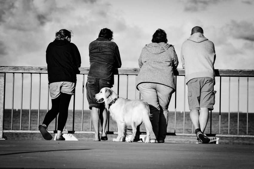 EyeEm Selects Dog One Animal Domestic Animals Real People Walking Outdoors Day Mammal Men Casual Clothing Rear View Full Length Pets Lifestyles Women Leisure Activity Cloud - Sky Dog Lead Sky Friendship