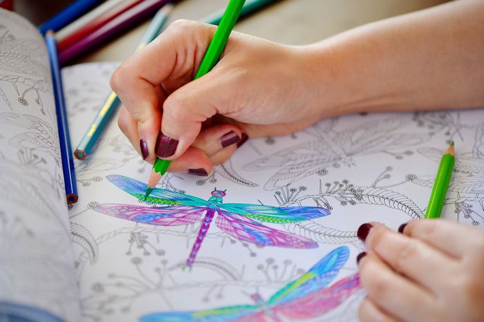 Human Hand Drawing - Activity Human Body Part Hands At Work Hands Painting Colored Pencil Color Palette Crayons Something I Like ArtWork Paint Color Combinations Colorful Palettes Animal Themes Meditation Relaxing Pencil Multi Colored Crayon Dragonfly